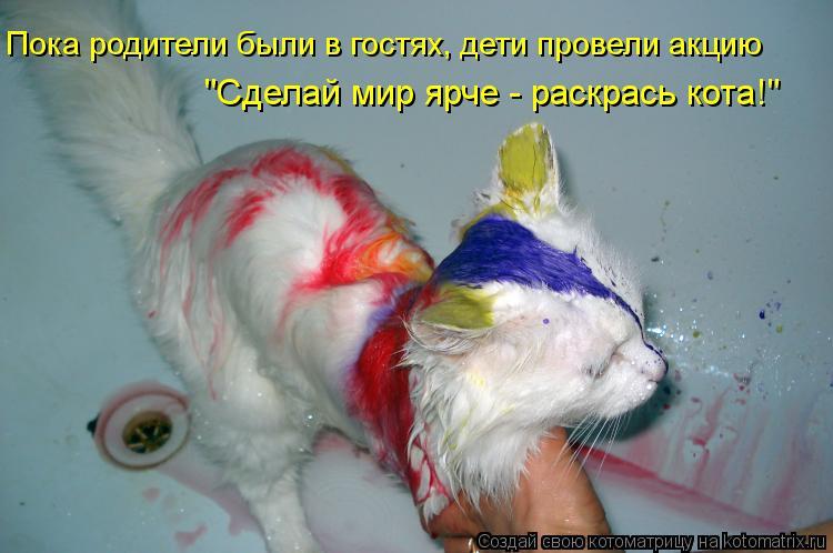 """Котоматрица: """"Сделай мир ярче - раскрась кота!"""" Пока родители были в гостях, дети провели акцию"""