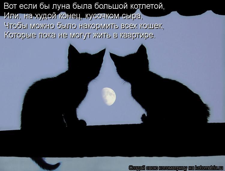 Котоматрица: Вот если бы луна была большой котлетой, Или, на худой конец, кусочком сыра, Чтобы можно было накормить всех кошек, Которые пока не могут жить