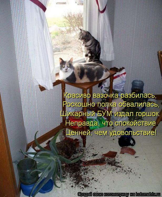 Котоматрица: Шикарный БУМ издал горшок. Роскошно полка обвалилась, Красиво вазочка разбилась, Неправда, что спокойствие Ценней, чем удовольствие!