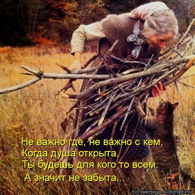 Котоматрица: Не важно где, не важно с кем, Когда душа открыта, Ты будешь для кого то всем. А значит не забыта...