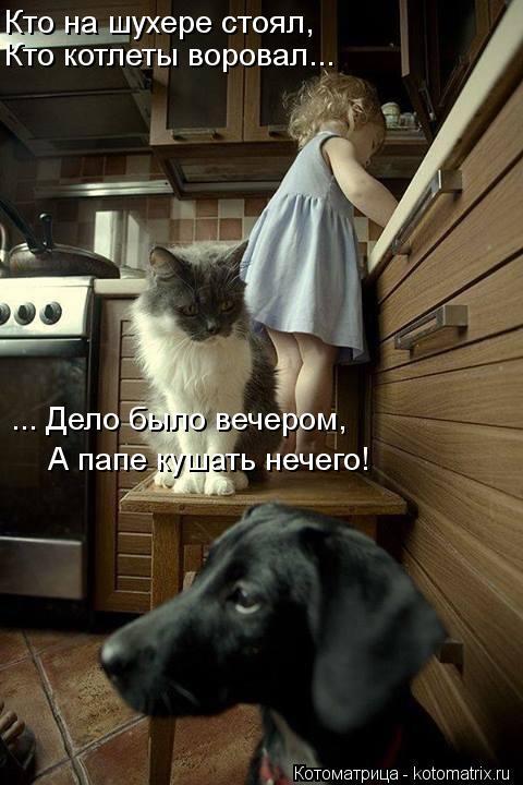 Котоматрица: Кто на шухере стоял, Кто котлеты воровал... ... Дело было вечером, А папе кушать нечего!