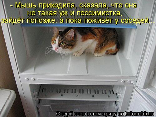 Котоматрица: - Мышь приходила, сказала, что она не такая уж и пессимистка, зайдёт попозже. а пока поживёт у соседей...