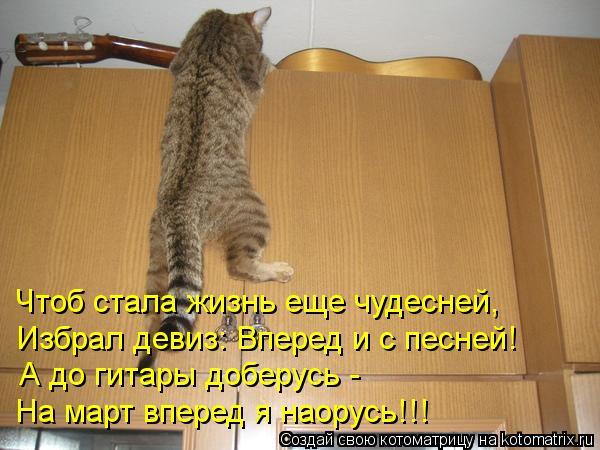 Котоматрица: Чтоб стала жизнь еще чудесней, Избрал девиз: Вперед и с песней! А до гитары доберусь - На март вперед я наорусь!!!