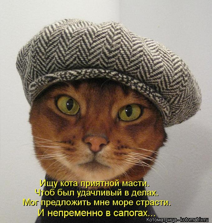 Котоматрица: Ищу кота приятной масти. Чтоб был удачливый в делах. Мог предложить мне море страсти. И непременно в сапогах...