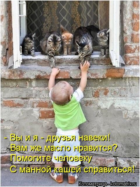 Котоматрица: - Вы и я - друзья навеки! Вам же масло нравится? Помогите человеку С манной кашей справиться!