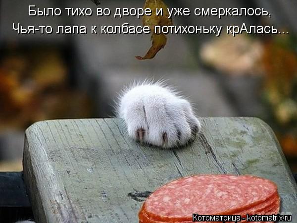 Котоматрица: Чья-то лапа к колбасе потихоньку крАлась... Было тихо во дворе и уже смеркалось,