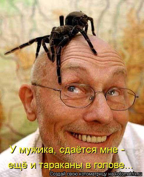 Котоматрица: У мужика, сдаётся мне -  ещё и тараканы в голове...