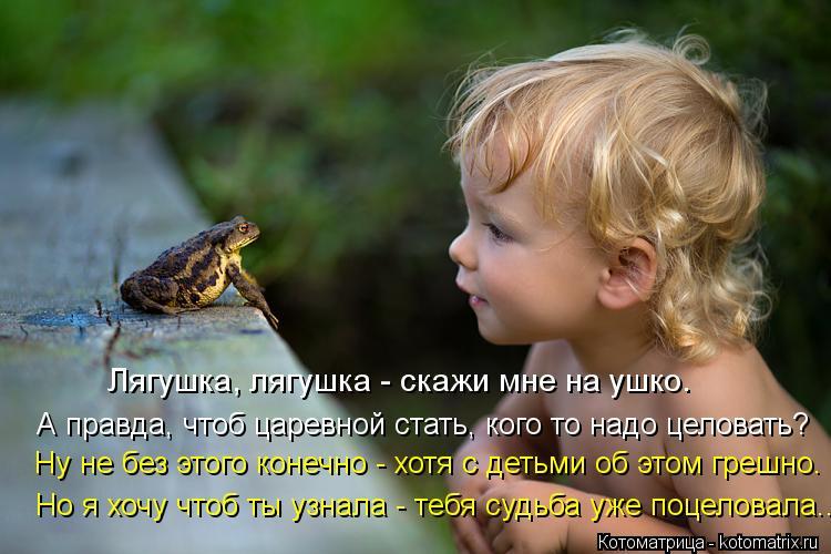 Котоматрица: Лягушка, лягушка - скажи мне на ушко. А правда, чтоб царевной стать, кого то надо целовать? Ну не без этого конечно - хотя с детьми об этом греш