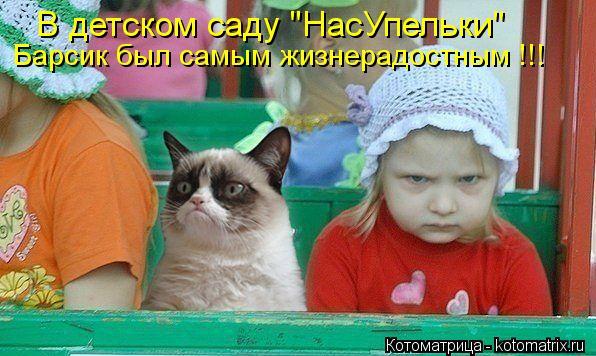 """Котоматрица: В детском саду """"НасУпельки"""" Барсик был самым жизнерадостным !!!"""