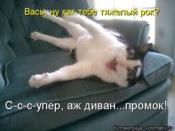 Котоматрица: Вась, ну как тебе тяжелый рок? С-с-с-упер, аж диван...промок!