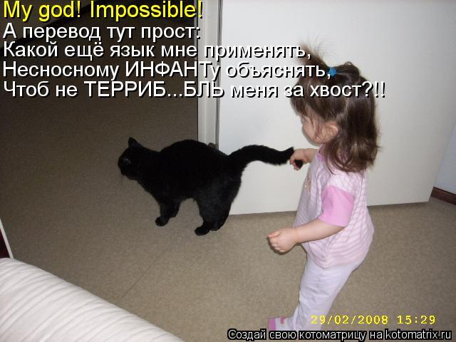 Котоматрица: My god! Impossible! А перевод тут прост: Несносному ИНФАНТу объяснять, Какой ещё язык мне применять, Чтоб не ТЕРРИБ...БЛЬ меня за хвост?!!