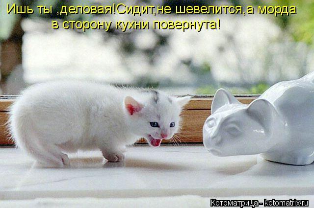 Котоматрица: Ишь ты ,деловая!Сидит,не шевелится,а морда в сторону кухни повернута!