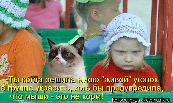 """Котоматрица: -Ты когда решила мною """"живой"""" уголок  в группе украсить, хоть бы предупредила, что мыши - это не корм!"""