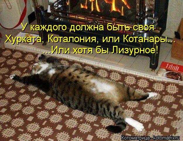 Котоматрица: У каждого должна быть своя Хурката, Коталония, или Котанары... ...Или хотя бы Лизурное!