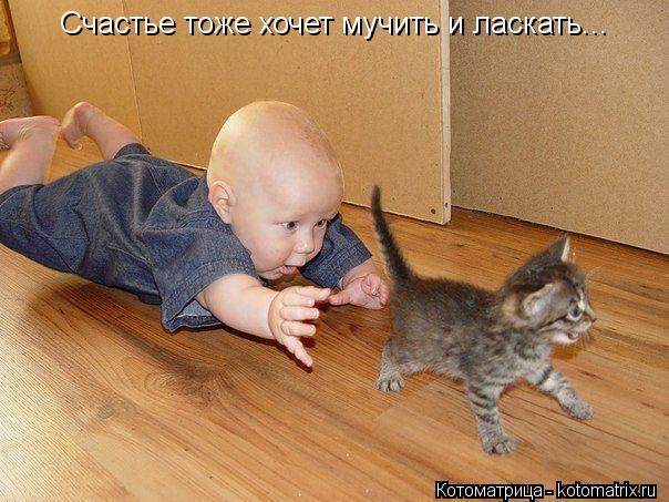 Котоматрица: Счастье тоже хочет мучить и ласкать...