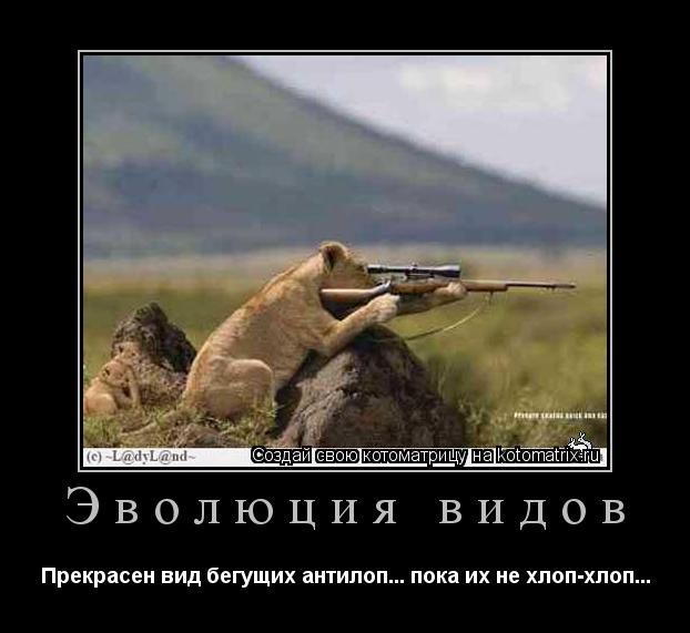 Котоматрица: Эволюция видов Прекрасен вид бегущих антилоп... пока их не хлоп-хлоп...