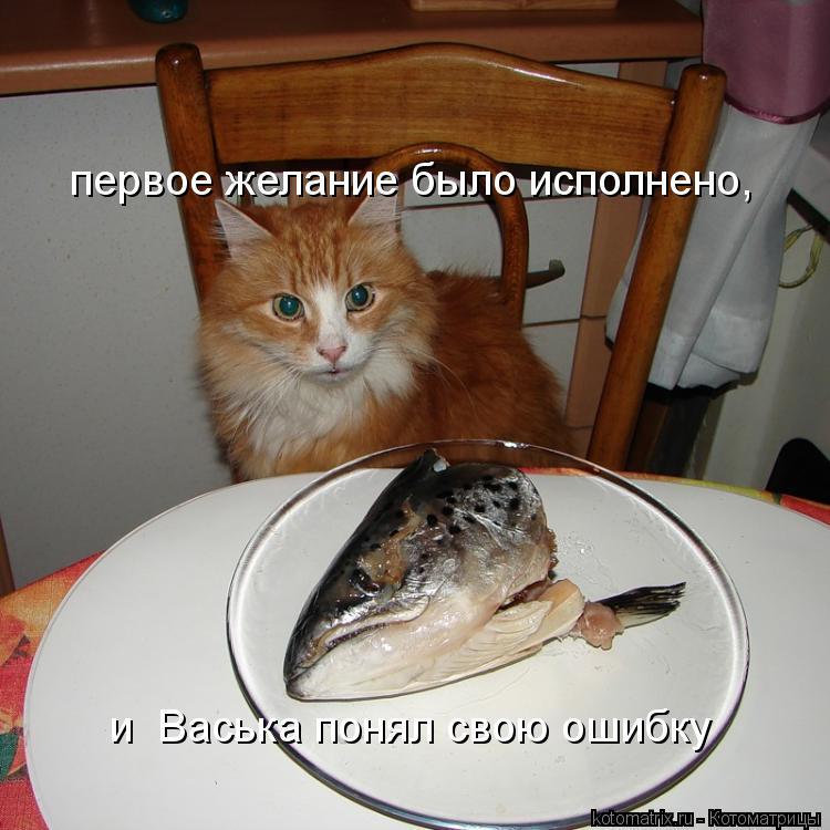 Котоматрица: первое желание было исполнено, и  Васька понял свою ошибку
