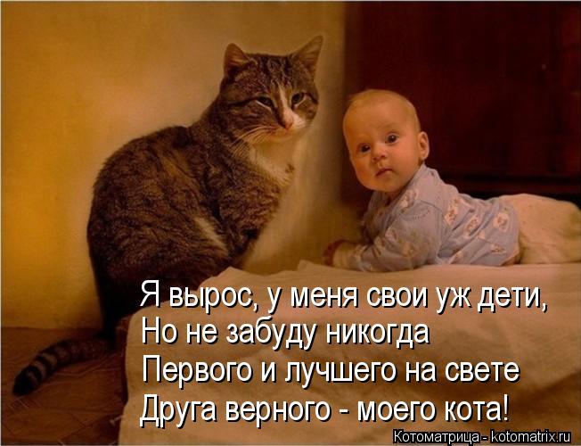 Котоматрица: Я вырос, у меня свои уж дети, Но не забуду никогда Первого и лучшего на свете Друга верного - моего кота!