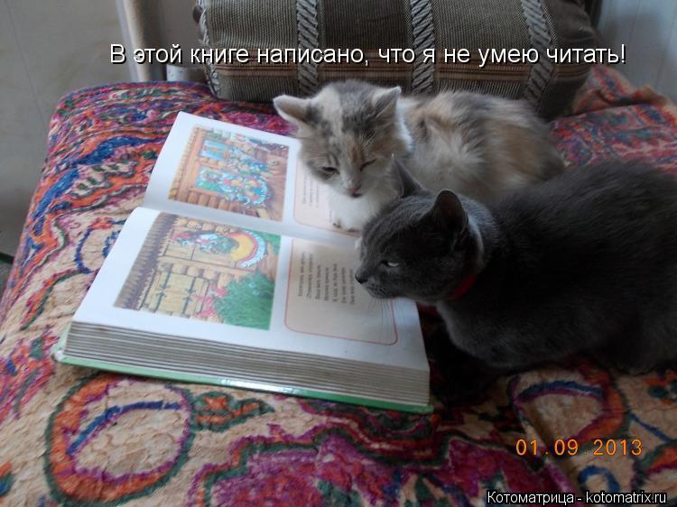 Котоматрица: В этой книге написано, что я не умею читать!