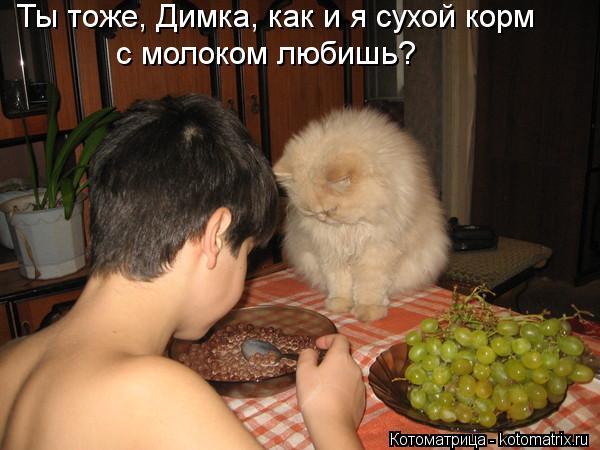 Котоматрица: Ты тоже, Димка, как и я сухой корм  с молоком любишь?