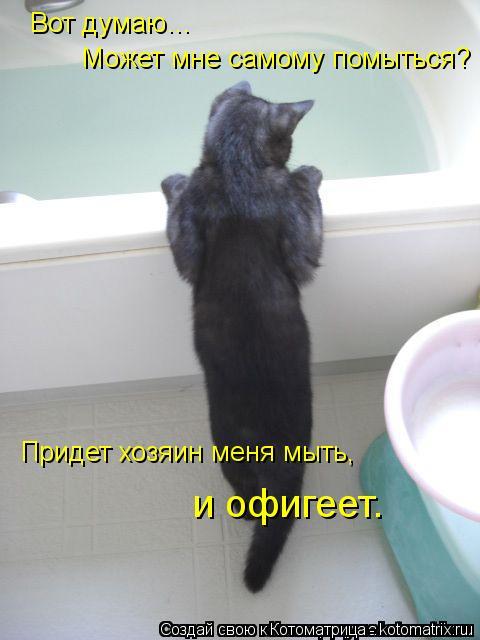 Котоматрица: Вот думаю…  Может мне самому помыться? Придет хозяин меня мыть, и офигеет.