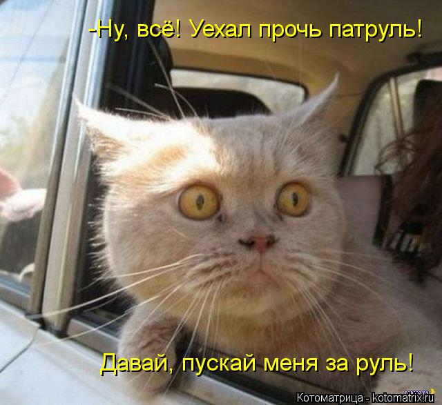Котоматрица: -Ну, всё! Уехал прочь патруль! Давай, пускай меня за руль!