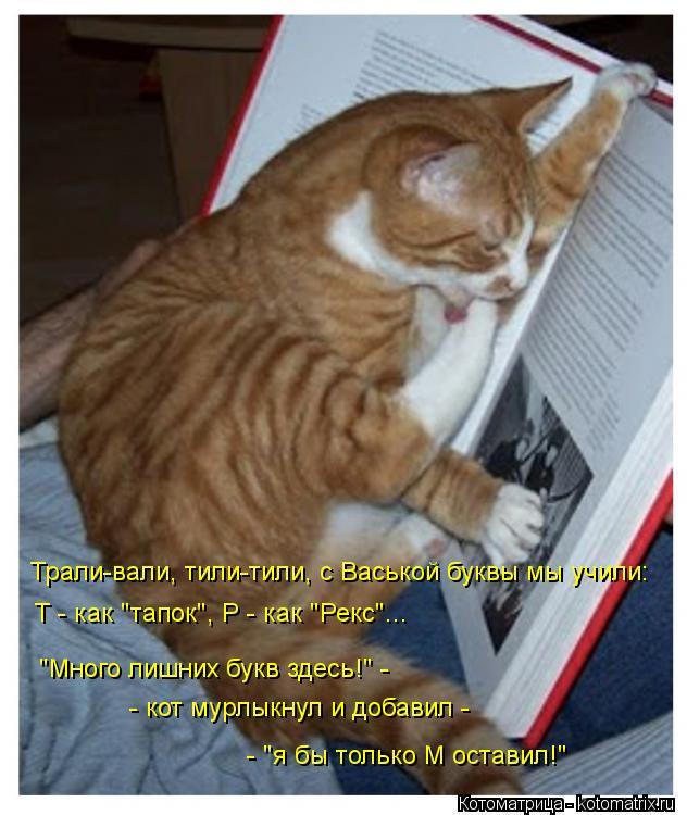 """Котоматрица: Трали-вали, тили-тили, с Васькой буквы мы учили: Т - как """"тапок"""", Р - как """"Рекс""""...  """"Много лишних букв здесь!"""" - - кот мурлыкнул и добавил -  - """"я бы тол"""