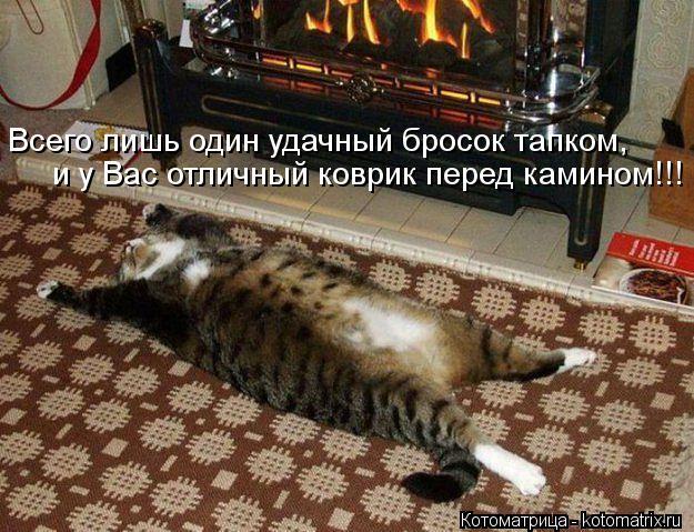 Котоматрица: Всего лишь один удачный бросок тапком, и у Вас отличный коврик перед камином!!!
