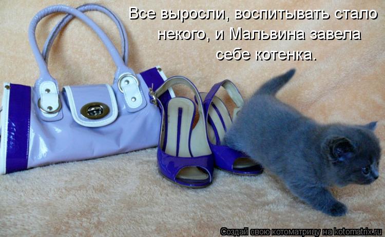 Котоматрица: Все выросли, воспитывать стало  некого, и Мальвина завела  себе котенка.