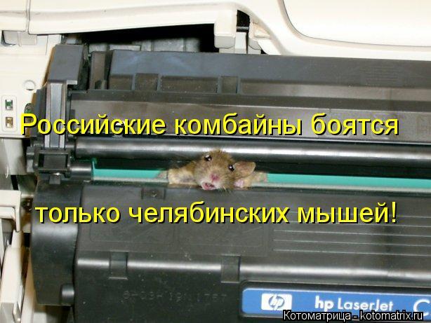 Котоматрица: Российские комбайны боятся только челябинских мышей!