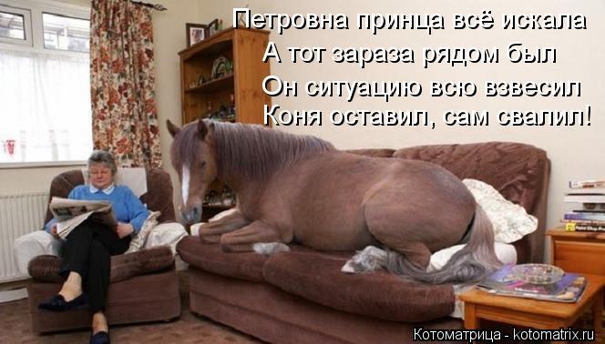 Котоматрица: Петровна принца всё искала А тот зараза рядом был Коня оставил, сам свалил! Он ситуацию всю взвесил