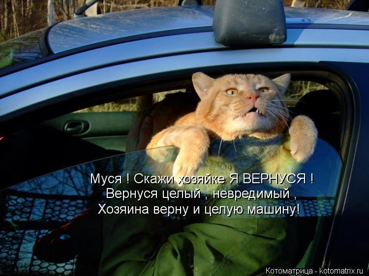 Котоматрица: Муся ! Скажи хозяйке Я ВЕРНУСЯ ! Вернуся целый , невредимый , Хозяина верну и целую машину!