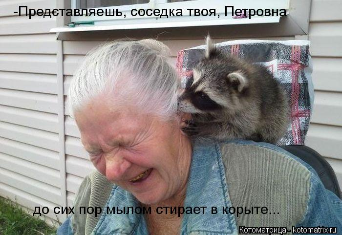 Котоматрица: -Представляешь, соседка твоя, Петровна  до сих пор мылом стирает в корыте...