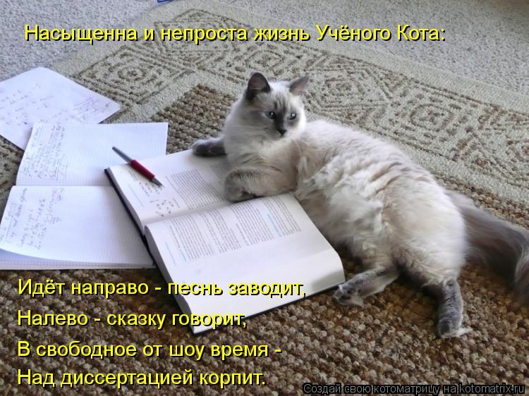 Котоматрица: Насыщенна и непроста жизнь Учёного Кота: Идёт направо - песнь заводит,  Налево - сказку говорит, В свободное от шоу время - Над диссертацией к