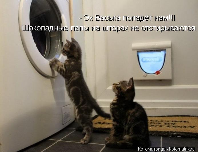 Котоматрица: Шоколадные лапы на шторах не отстирываются.... - Эх Васька попадёт нам!!!
