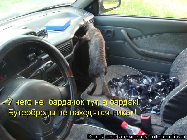 Котоматрица: - У него не  бардачок тут, а бардак! Бутерброды не находятся никак!