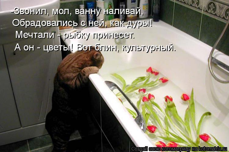 Котоматрица: - -Звонил, мол, ванну наливай, Обрадовались с ней, как дуры! Мечтали - рыбку принесет. А он - цветы! Вот блин, культурный.