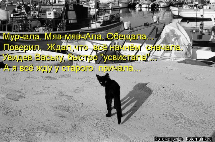 "Котоматрица: А я всё жду у старого  причала... Увидев Ваську, быстро ""усвистала""... Поверил.  Ждал,что  всё начнём  сначала. Мурчала. Мяв-мявчАла. Обещала..."
