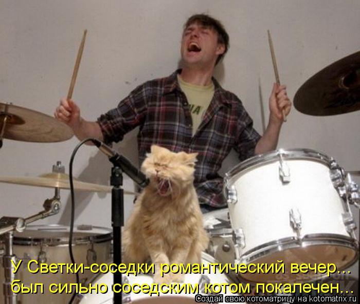 Котоматрица: У Светки-соседки романтический вечер... был сильно соседским котом покалечен...