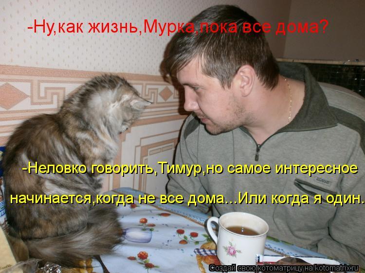 Котоматрица: -Неловко говорить,Тимур,но самое интересное  начинается,когда не все дома...Или когда я один... -Ну,как жизнь,Мурка,пока все дома?