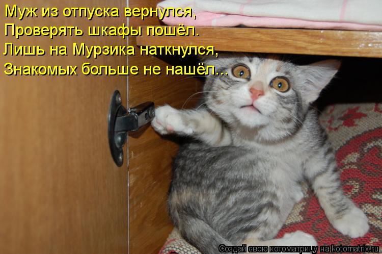 Котоматрица: Муж из отпуска вернулся, Проверять шкафы пошёл. Лишь на Мурзика наткнулся, Знакомых больше не нашёл...