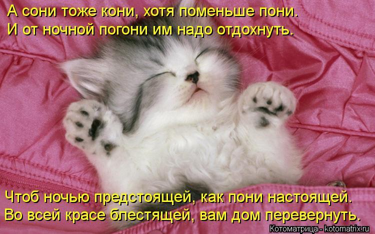 Котоматрица: А сони тоже кони, хотя поменьше пони. И от ночной погони им надо отдохнуть. Чтоб ночью предстоящей, как пони настоящей. Во всей красе блестящ