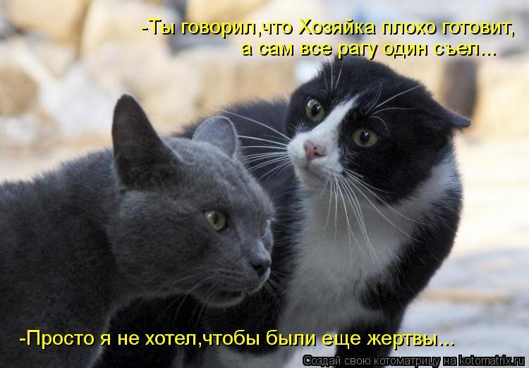 Котоматрица: -Ты говорил,что Хозяйка плохо готовит, а сам все рагу один съел... -Просто я не хотел,чтобы были еще жертвы...