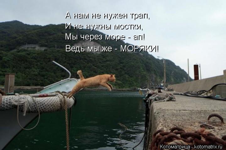 Котоматрица: А нам не нужен трап, И не нужны мостки, Мы через море - ап! Ведь мы же - МОРЯКИ!
