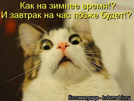 Котоматрица: Как на зимнее время!? И завтрак на час позже будет!?
