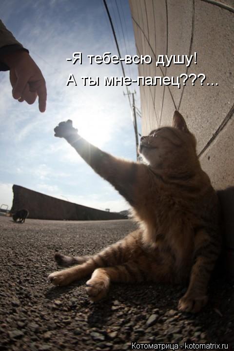 Котоматрица: -Я тебе-всю душу! А ты мне-палец???...