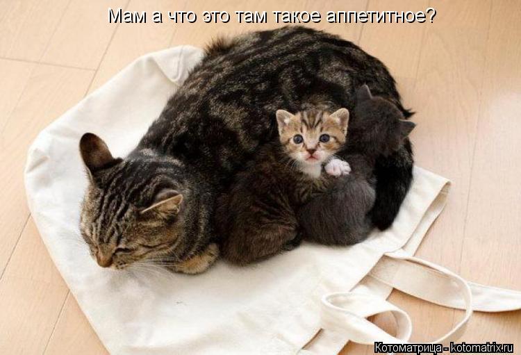 Соблазнительные мамаши топлесс 6 фотография