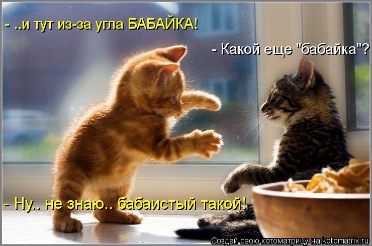 "Котоматрица: - ..и тут из-за угла БАБАЙКА! - Какой еще ""бабайка""? - Ну.. не знаю.. бабаистый такой!"