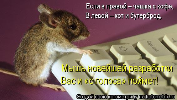 Котоматрица: Если в правой – чашка с кофе, В левой – кот и бутерброд, Мышь новейшей разработки Вас и «с голоса» поймет!