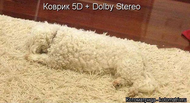 Котоматрица: Коврик 5D + Dolby Stereo